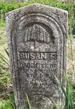 Susan <i>Fields</i> Tweedle