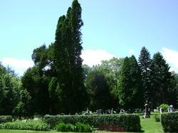 Trough Creek Cemetery