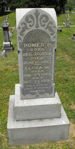 Homer P Hawks