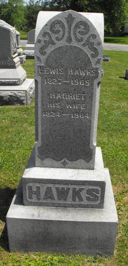Lewis Hawks