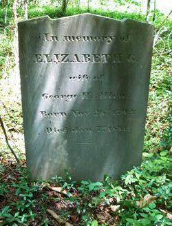 Elizabeth G <i>Steger</i> Allen