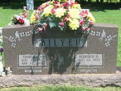 Shirley Ann <i>Kronenberg</i> Bilyeu