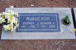 Stephen Aubuchon