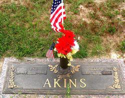 Ilene Akins