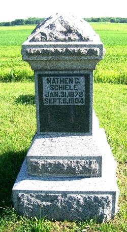 Nathan Cook Schiele