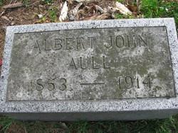 Albert John Aull