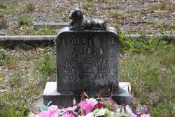 Amelia Sue Alford
