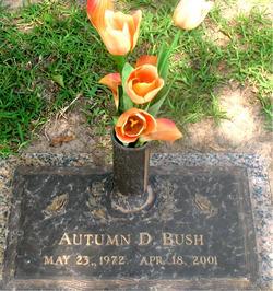 Autumn D Bush