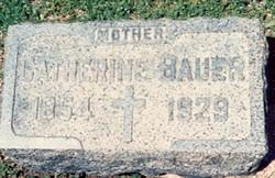 Catherine <i>Geisler</i> Bauer