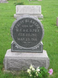 Fairy Blanche Fox