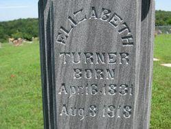 Elizabeth Nancy <i>Clements</i> Turner