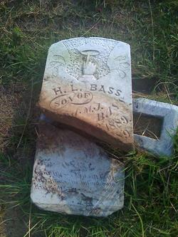 Holly L. Bass