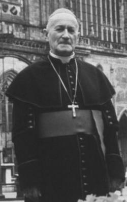 Cardinal Frantisek Tom�sek