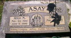 Alice <i>Middelstadt</i> Asay