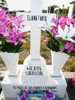 Iliana Cantu