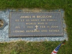 James H Bigelow
