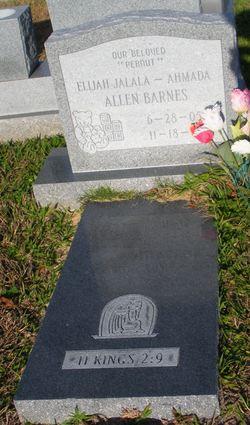 Elijah Jalala Ahmada-Allen Barnes