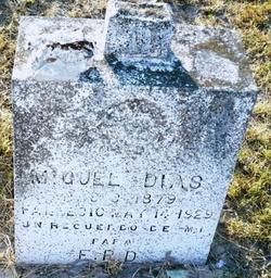 Miguel Dias
