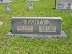 Lillie Jane <i>Wood</i> Bailey
