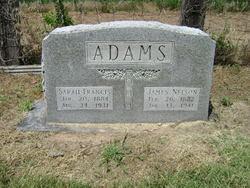 Sarah Frances Fannie <i>Shockley</i> Adams