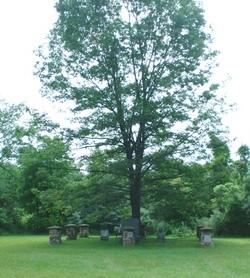 Brown Gravesite