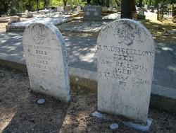 Mary L. Longfellow