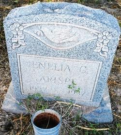 Enelia Arispe