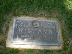 Louis Bier Louie Williams, Jr
