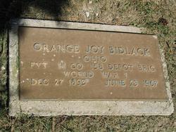 Orange Joy Bidlack