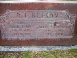 David LeRoy Nelson