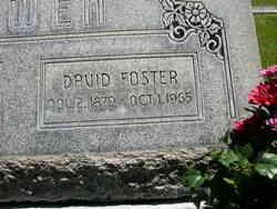 David <i>Foster</i> Bowen
