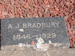 A J Bradbury