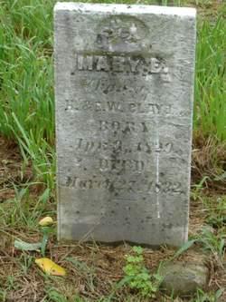 Mary E Clay