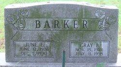 Gray Briggs Barker