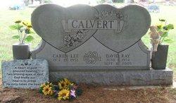David Ray Calvert