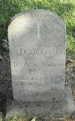 Joel L. Boies