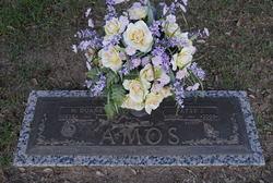 Patsy Jean <i>Walker</i> Amos