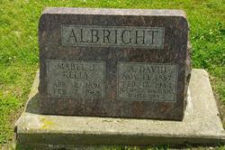 A. David Albright