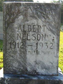 Albert Richard Nelson