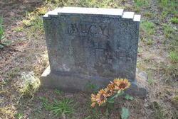 Samuel Henry Bucy