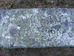 Alice M. <i>Arnold</i> Allen