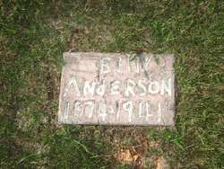 William Wesley Billy Anderson