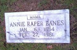 Annie <i>Clonts</i> Raper-Banes