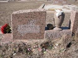 Lorena Mae Grandma Barnes <i>Alderson</i> Barnes