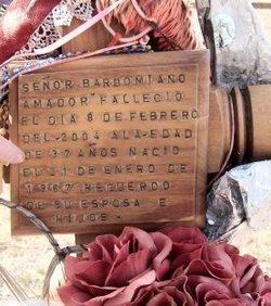 Bardomiano Amador