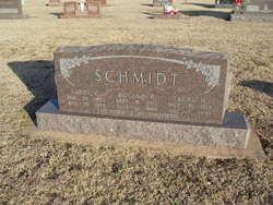 Laura H. Schmidt