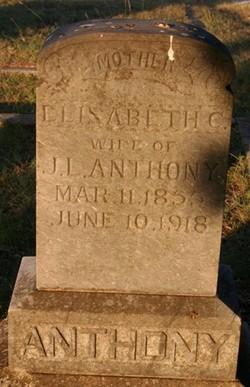 Elisabeth <i>Cato</i> Anthony