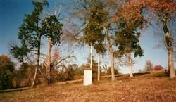 Wessyngton Slave Cemetery