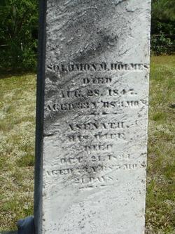 Solomon Maynard Holmes