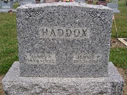 Harry F Haddox